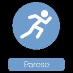 07_Parese